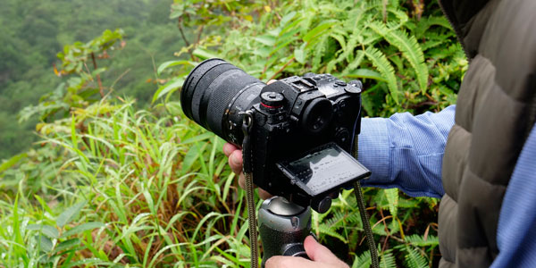 Capture the action with Cameras and Lenses from Panasonic