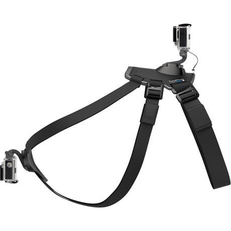 GoPro Fetch Dog Harness Image 1