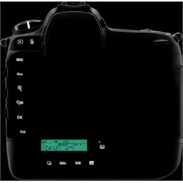 Nikon D5 Body Only - Dual XQD Version Thumbnail Image 6