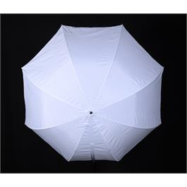 Rotolight Illuminator with Umbrella mount Thumbnail Image 3
