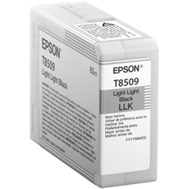 Epson T850900 Light Light Black for SC-P800 thumbnail