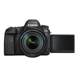 Canon EOS 6D Mark II with 24-105mm f3.5-5.6 IS STM Lens Thumbnail Image 7