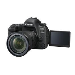 Canon EOS 6D Mark II with 24-105mm f3.5-5.6 IS STM Lens Thumbnail Image 8