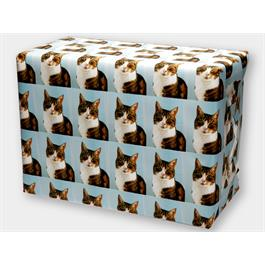 Park Cameras Personalised Photo Wrapping Paper thumbnail