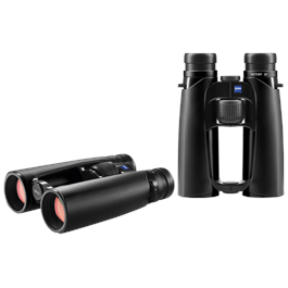 Victory SF 10x42 Binocular