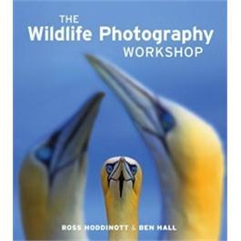GMC The Wildlife Photography Workshop Thumbnail Image 0