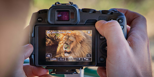 Get hands on with the latest products from Canon
