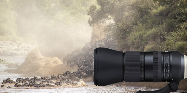 Unleash your creativity with a wide-range of lenses from Tamron