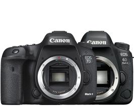 Canon DSLR Camera cashback